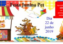 MAGALY Pet Festa Junina