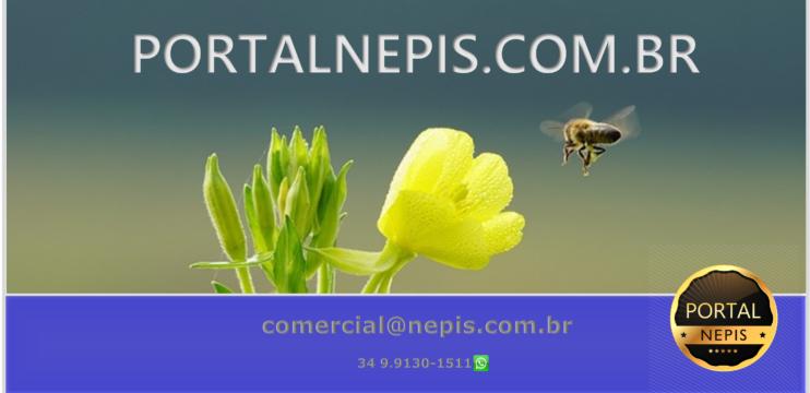 Portal NEPIS Uberlândia MG