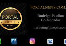 Portal NEPIS – Soluções Empresarial